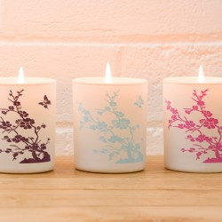 2 for £15 China Garden Candles