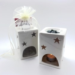 The Original Fragrance Wax Bar and Melter set
