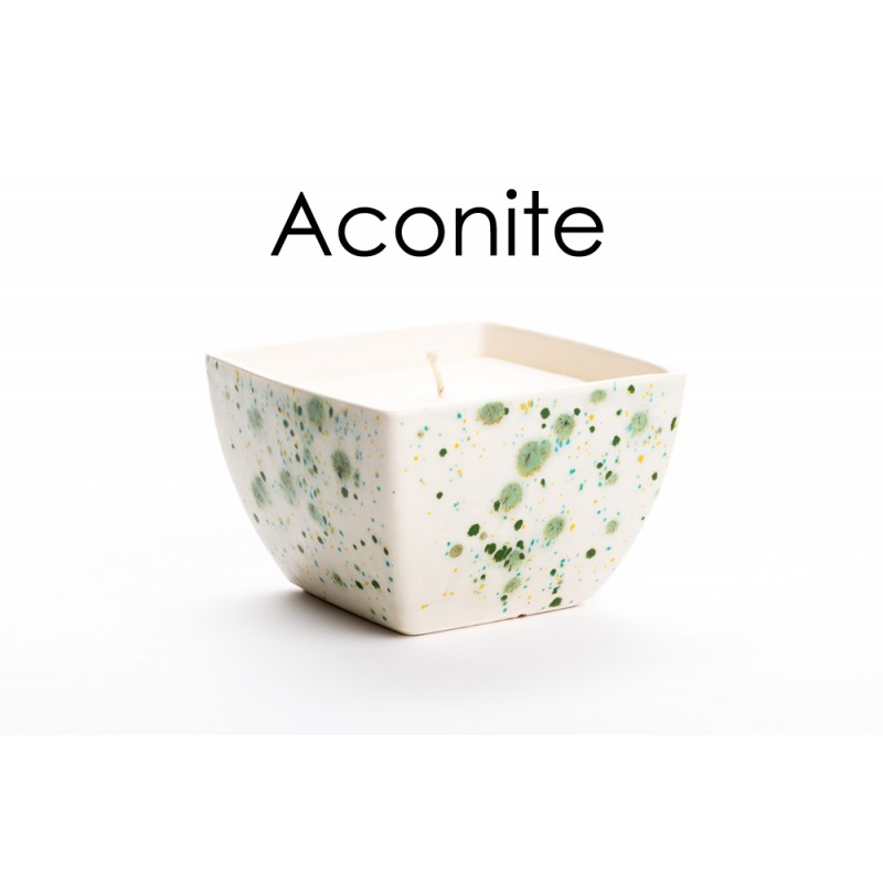 Beauty Spots Candles - Spring Hedgerows-Aconite